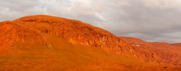 Kuldojake mägedes