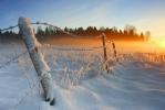lumine_aed