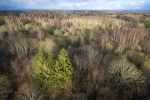 magav mets