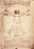 DaVinci - Vitruvian Man