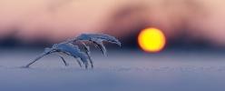 Külm päike