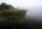 järve kallas