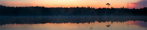 Hommikune järv 60x290